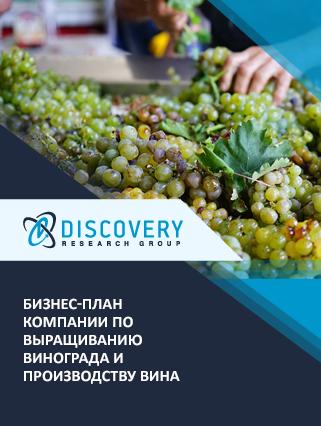 Бизнес-план компании по выращиванию винограда и производству вина
