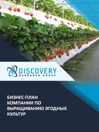 Бизнес-план компании по выращиванию ягодных культур