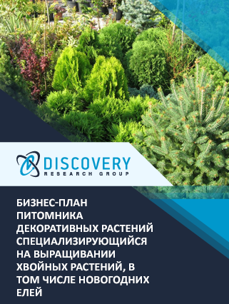 Бизнес-план питомника декоративных растений специализирующийся на выращивании хвойных растений, в том числе новогодних елей