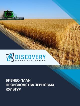 Бизнес-план производства зерновых культур