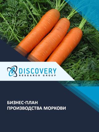 Бизнес-план производства моркови