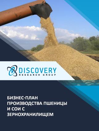 Бизнес-план производства пшеницы и сои с зернохранилищем