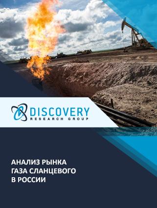 Маркетинговое исследование - Анализ рынка газа сланцевого в России