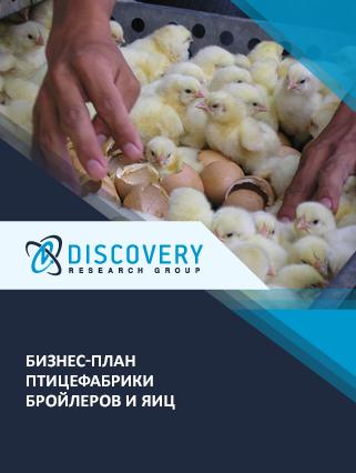 Бизнес-план птицефабрики бройлеров и яиц
