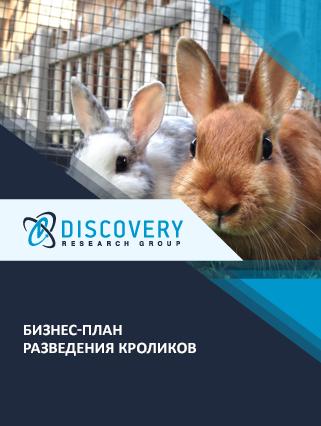 Бизнес-план разведения кроликов