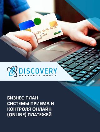 Маркетинговое исследование - Бизнес-план системы приема и контроля онлайн (online) платежей