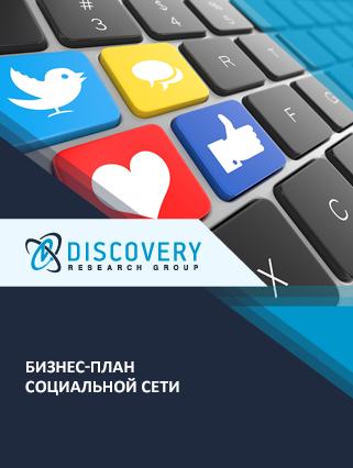 Маркетинговое исследование - Бизнес-план социальной сети