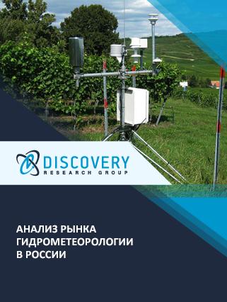 Маркетинговое исследование - Анализ рынка гидрометеорологии в России