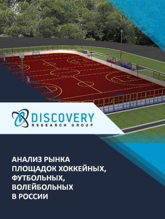 Анализ рынка площадок хоккейных, футбольных, волейбольных в России