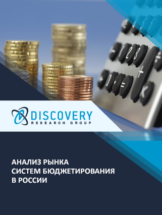 Маркетинговое исследование - Анализ рынка систем бюджетирования в России