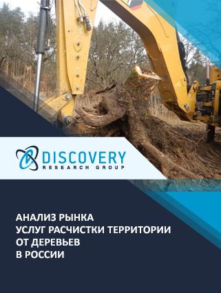 Маркетинговое исследование - Анализ рынка услуг расчистки территории от деревьев в России
