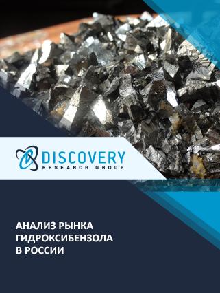 Маркетинговое исследование - Анализ рынка гидроксибензола в России