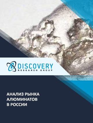 Анализ рынка алюминатов в России