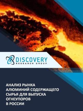 Анализ рынка алюминий содержащего сырья для выпуска огнеупоров в России