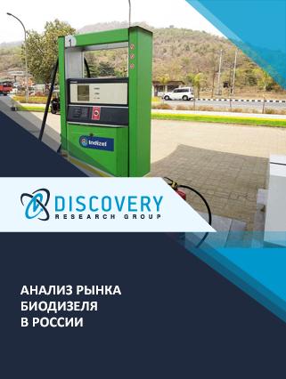 Маркетинговое исследование - Анализ рынка биодизеля в России