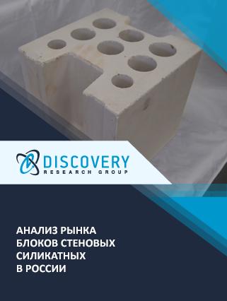 Маркетинговое исследование - Анализ рынка блоков стеновых силикатных в России
