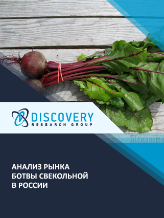 Маркетинговое исследование - Анализ рынка ботвы свекольной в России