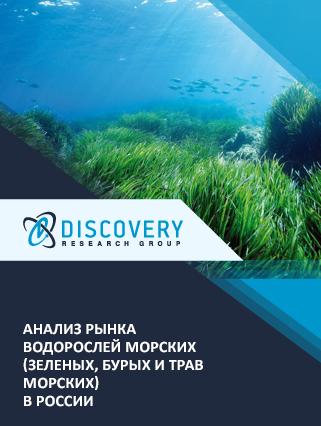 Маркетинговое исследование - Анализ рынка водорослей морских (зеленых, бурых и трав морских) в России