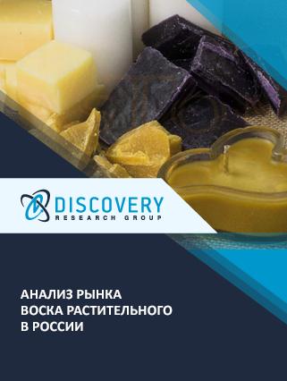 Маркетинговое исследование - Анализ рынка воска растительного в России