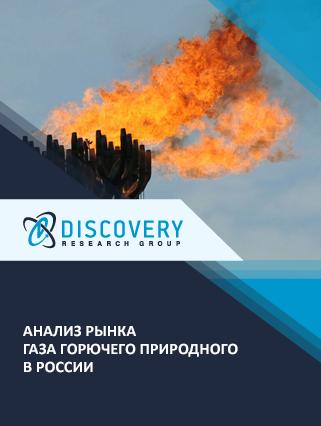 Маркетинговое исследование - Анализ рынка газа горючего природного в России