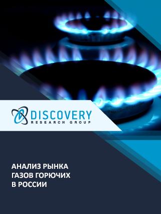 Анализ рынка газов горючих в России