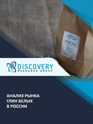 Маркетинговое исследование - Анализ рынка глин белых в России