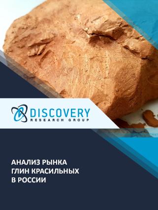 Маркетинговое исследование - Анализ рынка глин красильных в России