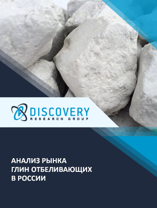Маркетинговое исследование - Анализ рынка глин отбеливающих в России