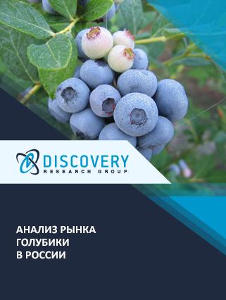 Анализ рынка голубики в России