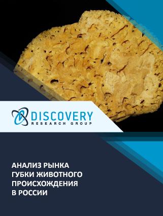 Анализ рынка губки животного происхождения в России