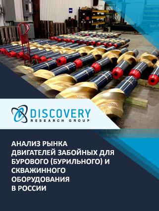 Маркетинговое исследование - Анализ рынка двигателей забойных для бурового (бурильного) и скважинного оборудования в России