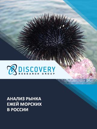 Маркетинговое исследование - Анализ рынка ежей морских в России