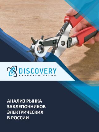 Маркетинговое исследование - Анализ рынка заклепочников электрических в России