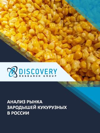 Маркетинговое исследование - Анализ рынка зародышей кукурузных в России