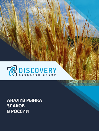 Маркетинговое исследование - Анализ рынка злаков в России