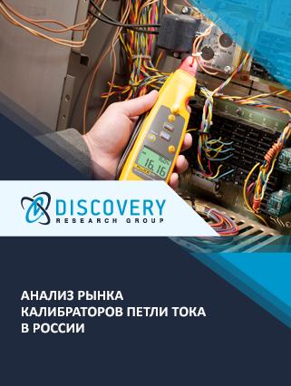 Анализ рынка калибраторов петли тока в России