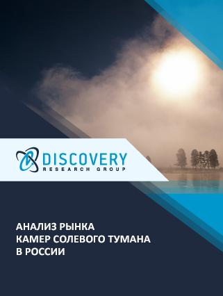 Анализ рынка камер солевого тумана в России