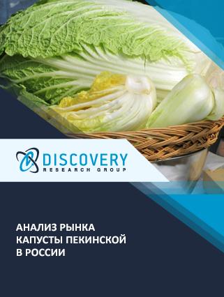 Анализ рынка капусты пекинской в России
