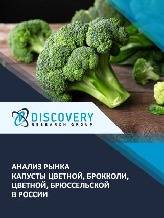 Анализ рынка капусты цветной, брокколи, цветной, брюссельской в России