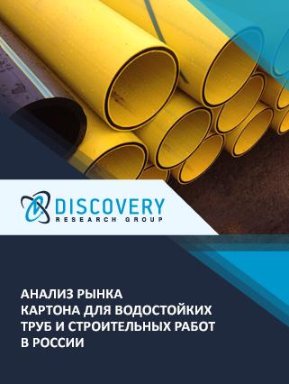 Маркетинговое исследование - Анализ рынка картона для водостойких труб и строительных работ в России