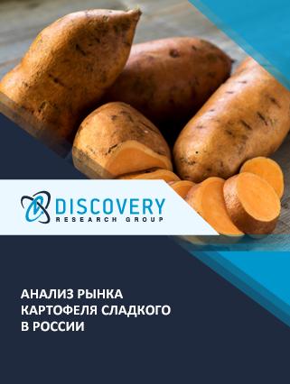 Анализ рынка картофеля сладкого в России