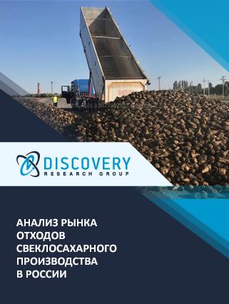 Маркетинговое исследование - Анализ рынка отходов свеклосахарного производства в России