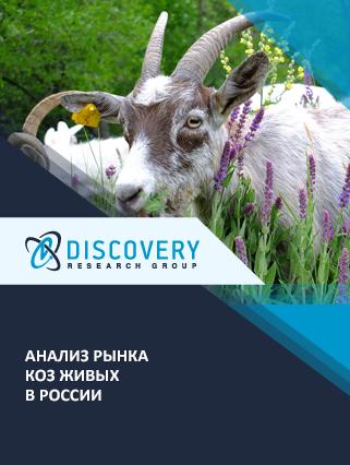 Маркетинговое исследование - Анализ рынка коз живых в России