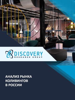 Маркетинговое исследование - Анализ рынка коливингов в России