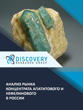 Маркетинговое исследование - Анализ рынка концентрата апатитового и нефелинового в России