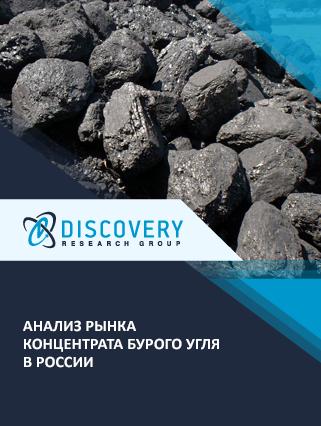 Анализ рынка концентрата бурого угля в России