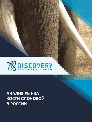 Маркетинговое исследование - Анализ рынка кости слоновой в России