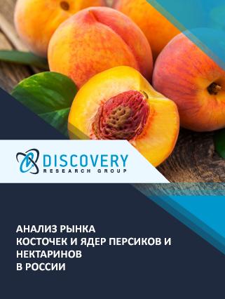 Маркетинговое исследование - Анализ рынка косточек и ядер персиков и нектаринов в России