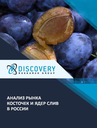 Маркетинговое исследование - Анализ рынка косточек и ядер слив в России