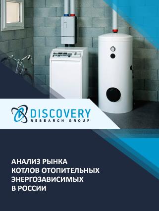 Анализ рынка котлов отопительных энергозависимых в России